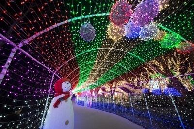 Gold Coast Christmas Lights